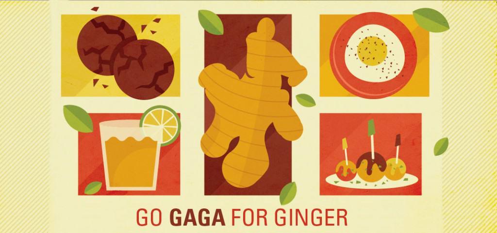 Go Gaga For Ginger - Ginger Recipes