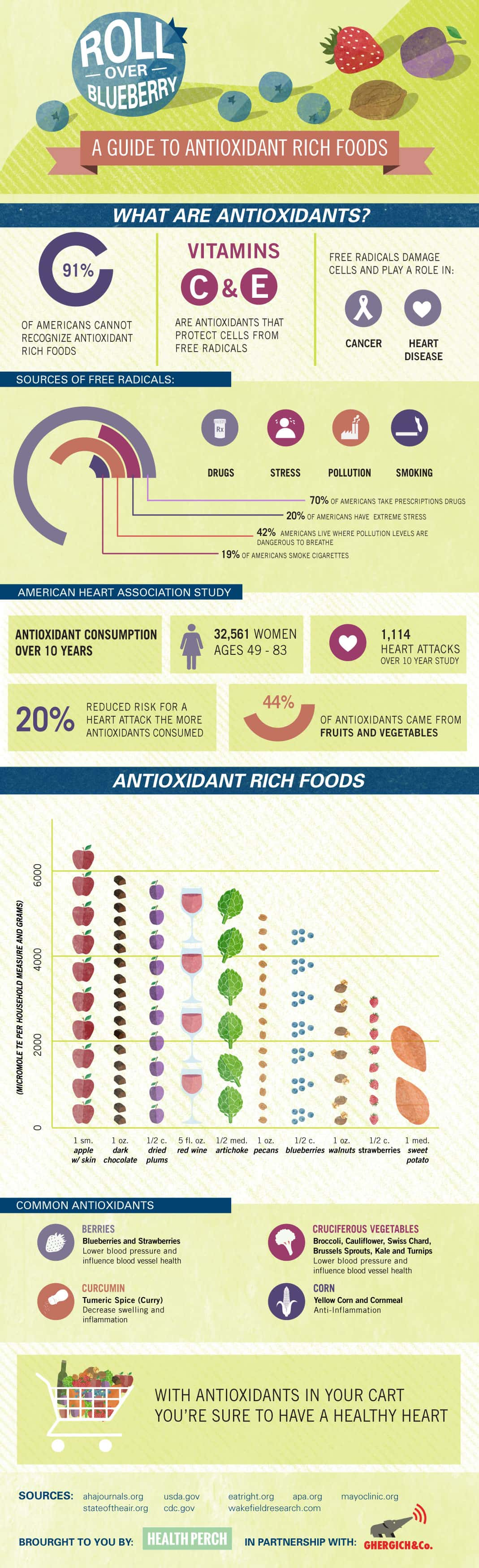 Roll Over Blueberry - A Guide To Antioxidants - Infographic