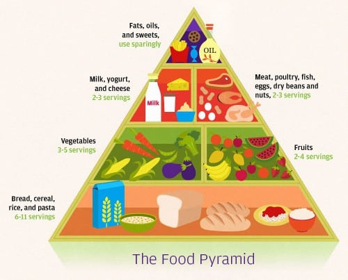 Priming For Paleo - 4 Experts Weigh In On Starting The Paleo Diet - Food Pyramid