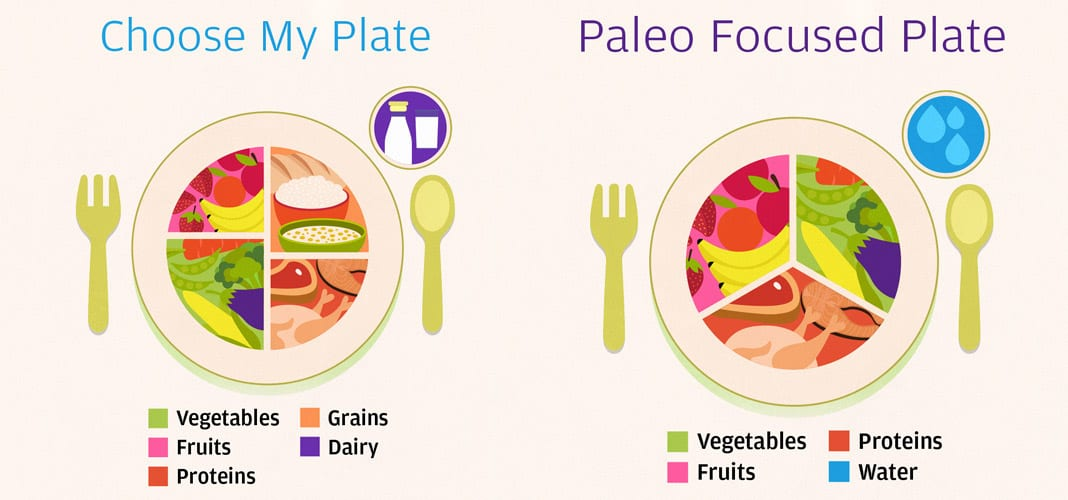 Priming For Paleo - A Beginners Guide to Starting the Paleo Diet.
