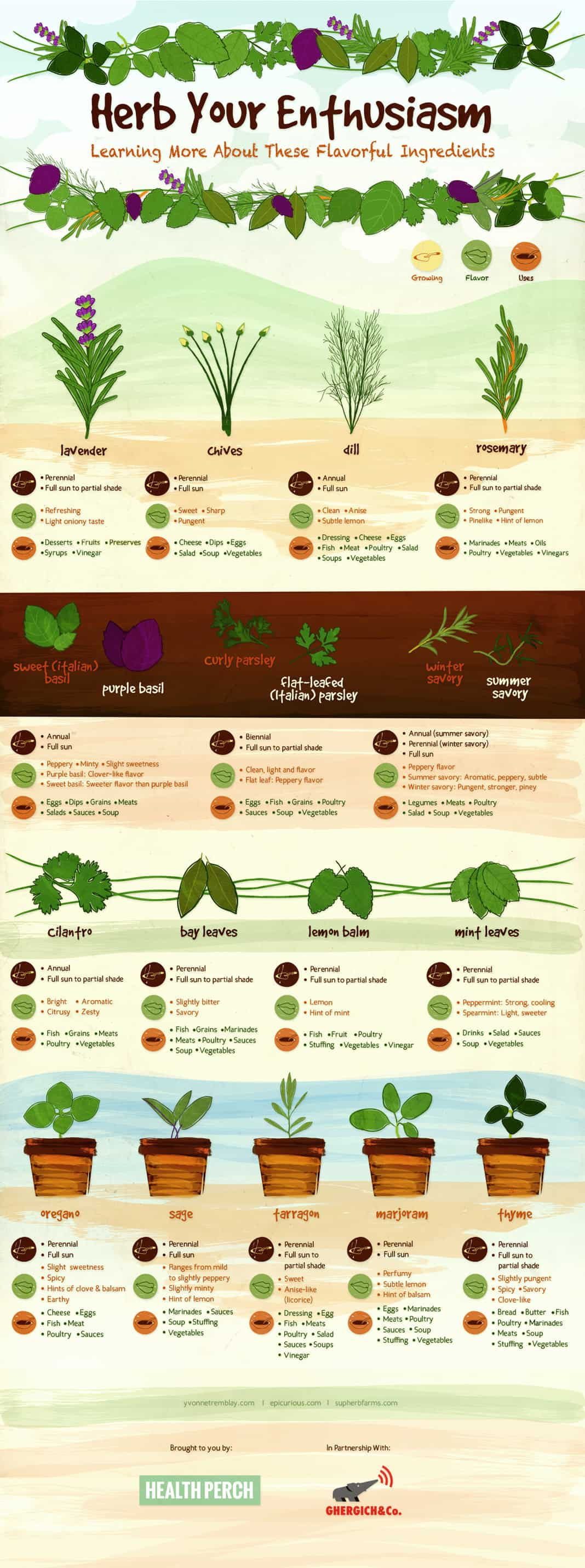 herb gardening 101 homeschool blog at homeschool com