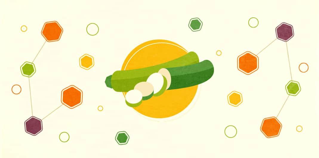 Zucchini Recipe Round Up