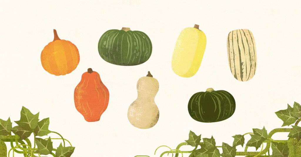 Squash Season: How to Cook, Roast, and Enjoy Fall's Favorite Fruit