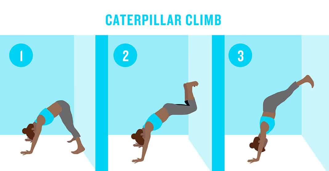 Caterpillar Climb
