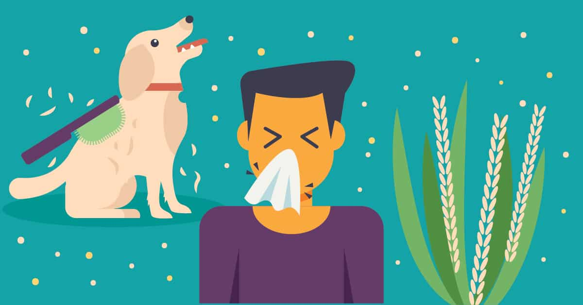 Why Seasonal Allergies Make You Feel Miserable and How to Prevent Them