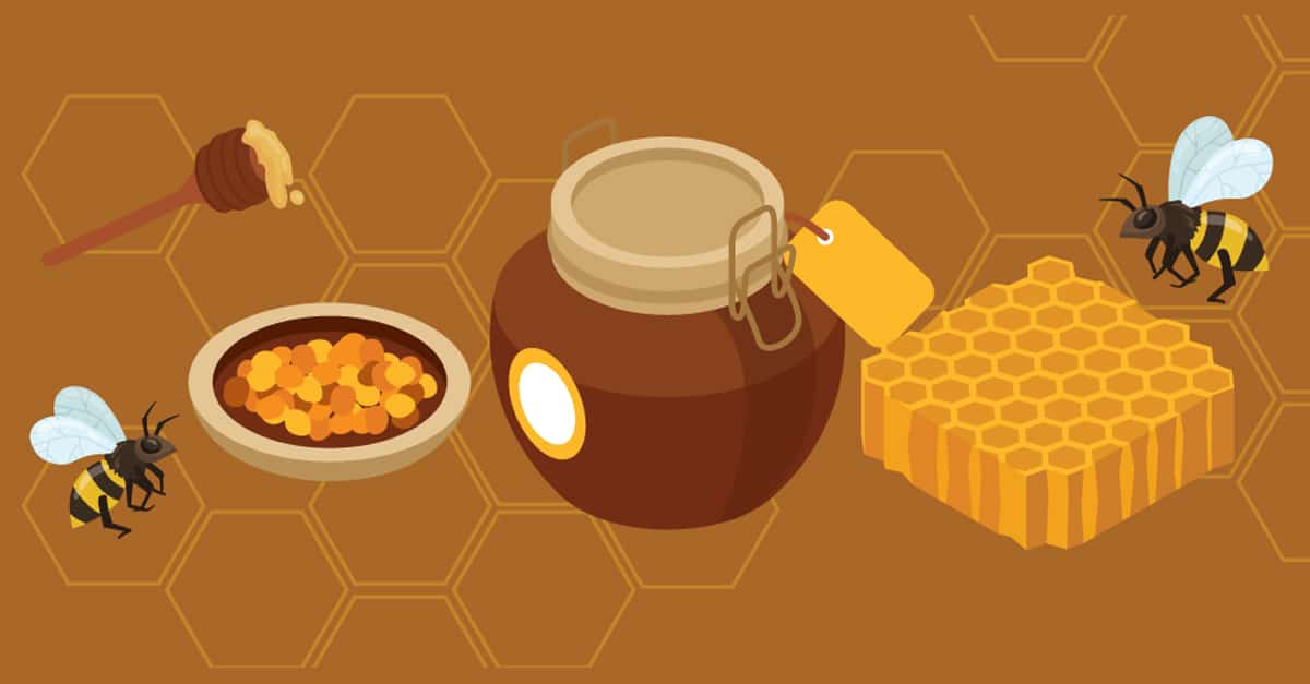 There's More to the Honeybee Than Honey: What Exactly Are Bee Pollen, Royal Jelly, and Propolis?